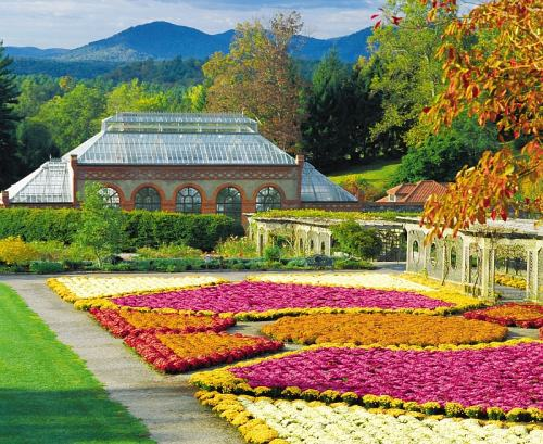 Fall, Walled Garden mums, photo by Biltmore Estate