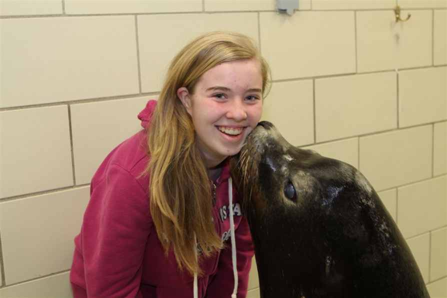 12 year old, Megan Fisher is given a sloppy kiss by 12 year old Pocus, a California Sea Lion