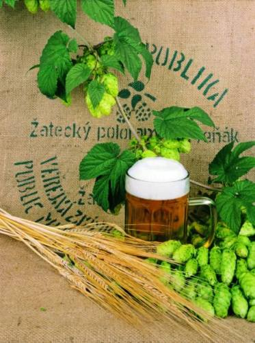 Ingredients For Czech Beer