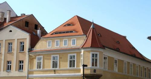 Zatec Roof Vents For Hops