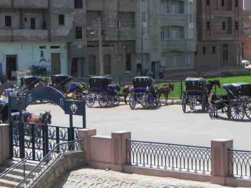Sightseeing By Carriage In Edfu