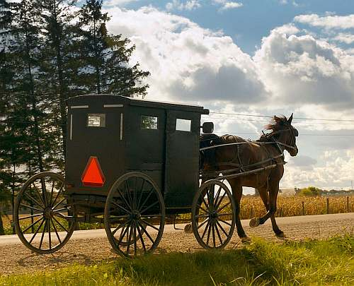 Elmira Mennonite Buggy, Wikipedia Commons