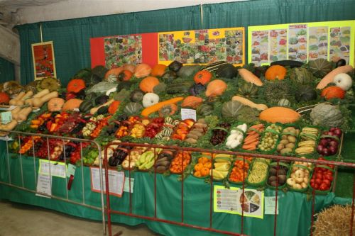 Award winning vegetables are always a feature at Fall fairs