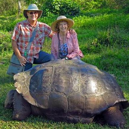 Giant Tortoise and us