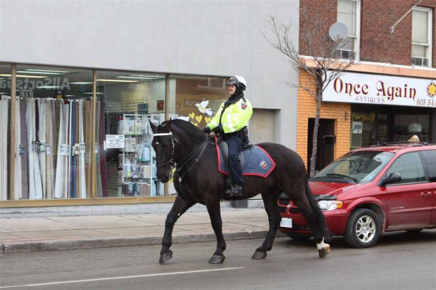 Hamilton Mounted Police Constable Tom McKittrick patrols Ottawa Street North