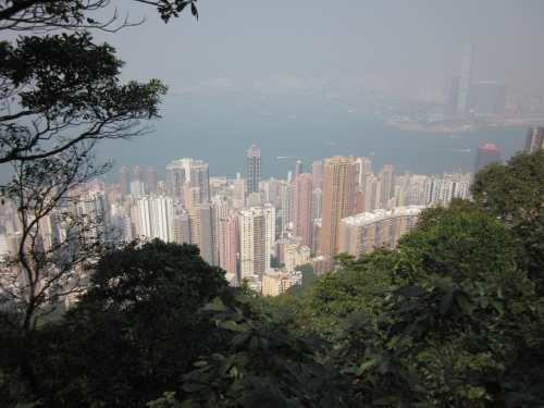 Looking down over Hong Kong from atop The Peak