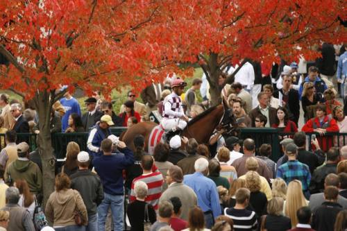 Keeneland Paddock In Fall