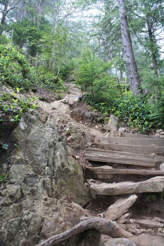 The Grouse Grind hiking trail, Wikimedia Commons