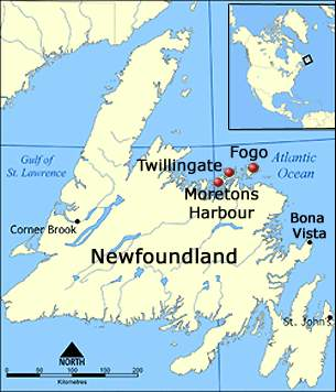 Map Of Newfounfland