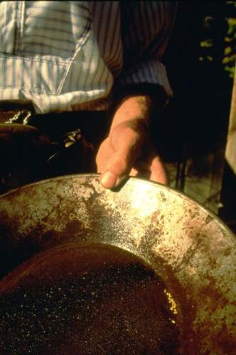 Panning For Gold, State Historic Park