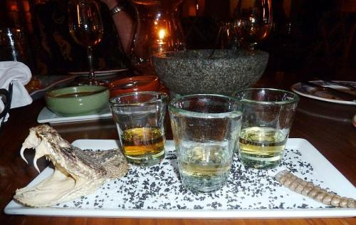 Flight of Tequila Complete With Rattlesnake