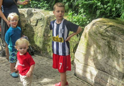 Niagara Parks Butterfly Conservatory, Emmett, Theo & William entranced by butterflies, photo by Mike Keenan